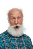 胡子例证长的人老向量 库存图片