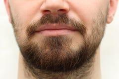 胡子和髭 免版税库存图片