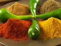 胡椒、姜黄、小茴香和桂香 免版税库存照片