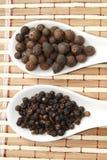 黑胡椒和多香果 免版税库存照片