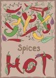 胡椒和香料,热 库存照片
