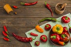 胡椒品种在木背景的 图库摄影