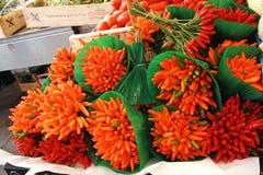 胡椒在市场上在威尼斯 库存图片