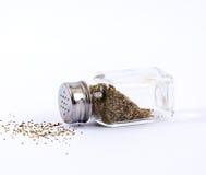 胡椒振动器 免版税库存照片