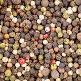 胡椒混合物五个等级 免版税图库摄影
