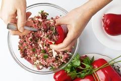胡椒用肉末和菜 库存图片