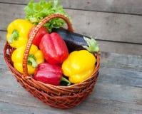胡椒用蕃茄、莴苣和茄子在篮子在木背景 库存图片