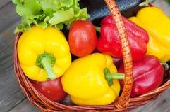 胡椒用蕃茄、莴苣和茄子在篮子在木背景 图库摄影