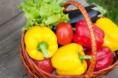 胡椒用蕃茄、莴苣和茄子在篮子在木背景 免版税库存图片