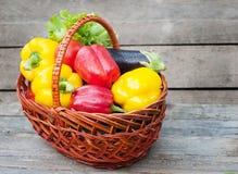 胡椒用蕃茄、莴苣和茄子在篮子在木背景 免版税库存照片