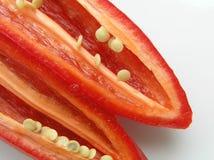 胡椒红色 免版税库存照片