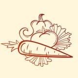 胡椒蕃茄和红萝卜 免版税库存照片