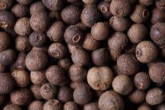 胡椒香料香豌豆花 免版税图库摄影