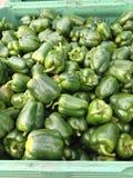 胡椒绿色辣椒的果实 库存照片