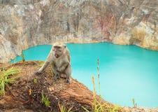 胡闹在火山口边缘与湖锡的在克里穆图火山 免版税图库摄影