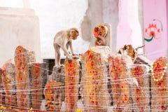 胡闹在礼节雕塑, Puttaparthi,安得拉邦,印度 复制文本的空间 库存照片