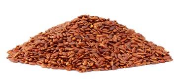胡麻或可食的tisi种子 免版税图库摄影