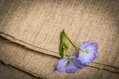 胡麻-在一件亚麻制纺织品的亚麻制花 库存照片