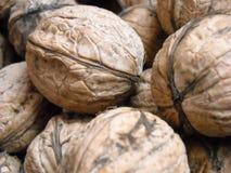胡说的自然食物秋天宏观吃坚果核桃船身纹理macrophoto 免版税图库摄影