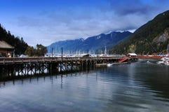 胳膊加拿大三文鱼 免版税库存图片
