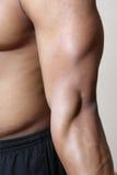 胳膊男肌肉 库存图片