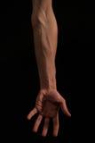 胳膊身体形状 免版税库存照片