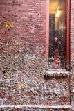 胶墙壁,西雅图, WA 免版税库存图片