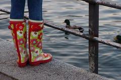 胶靴 免版税库存照片