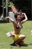 胸罩椰子 免版税库存照片