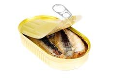 能上油开放沙丁鱼 库存图片
