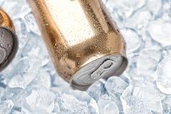 能在冰的新鲜的啤酒 库存照片