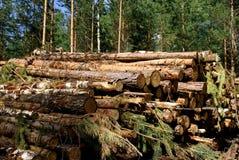 能源木头 库存图片