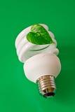 能源电灯泡节省额 免版税库存图片