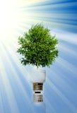 能源绿色 库存图片