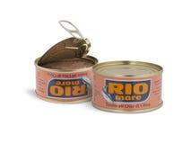 能里约母马在橄榄油的品牌金枪鱼 免版税库存图片