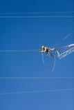 能量导线的工程师工作者 图库摄影