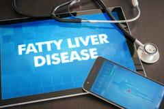 脂肪肝疾病(肝脏病)诊断医疗概念 免版税库存照片