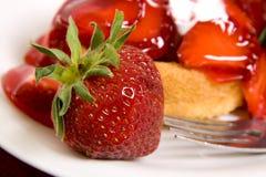 脆饼草莓 库存照片