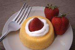 脆饼草莓 库存图片