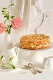 脆饼蛋糕用蛋白甜饼 图库摄影