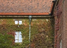 脉管博物馆在斯德哥尔摩 瑞典 免版税库存照片