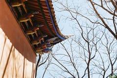 脊椎佛教寺庙 库存照片