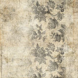 脏的古色古香的葡萄酒花卉背景 库存照片