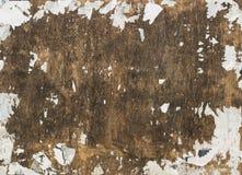 脏的木广告牌纹理 免版税库存照片