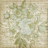 脏的棕色葡萄酒花卉纹理背景 库存照片