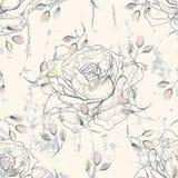 脏的花卉无缝的样式 图库摄影