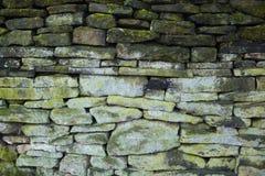 脏的绿色石墙背景 免版税库存照片