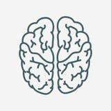 脑子传染媒介象 免版税库存图片