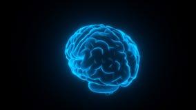 脑子发光的蓝色圈 皇族释放例证