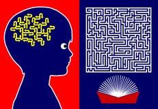 读脑子发展的 图库摄影